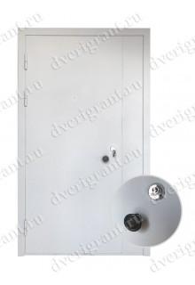 Металлическая нестандартная дверь - модель 14-013
