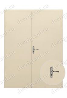 Входная металлическая двухстворчатая дверь - 10-023