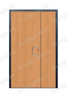 Металлическая дверь - 12-010