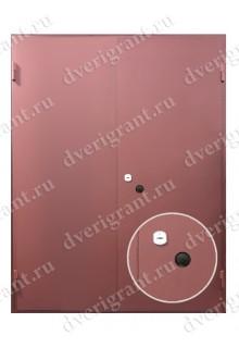 Металлическая нестандартная дверь - модель 14-018