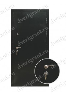 Металлическая дверь для частного дома - модель 20-001