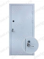 Входная металлическая дверь - 10-034