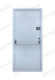 Техническая металлическая дверь 10-034
