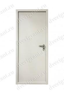 Техническая металлическая дверь 10-063
