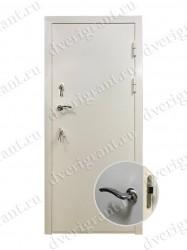 Входная металлическая дверь - 10-069