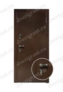 Металлическая дверь - модель - 10-070