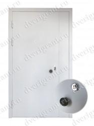 Нестандартная дверь - модель 14-013