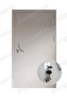 Металлическая дверь - модель - 06-009