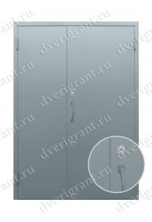 Двустворчатая металлическая дверь 10-022