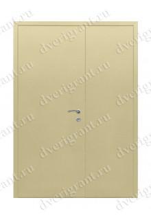 Двустворчатая металлическая дверь 10-029