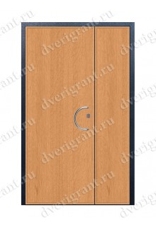 Металлическая дверь - модель - 12-010