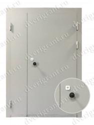 Двустворчатая металлическая дверь 13-001