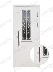 Металлическая дверь для дачи - 18-002