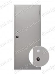 Металлическая дверь - 19-025