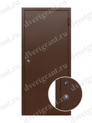 Металлическая дверь - 19-028