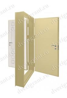 Металлическая дверь - модель - 20-022