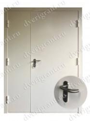 Металлическая дверь - 21-011