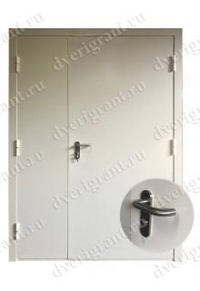 Техническая металлическая дверь 21-011