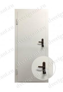 Техническая металлическая дверь 21-06