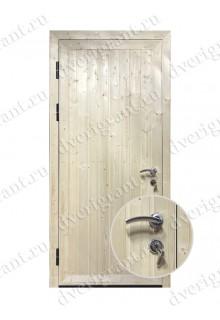 Дверь для дачи- 22-19