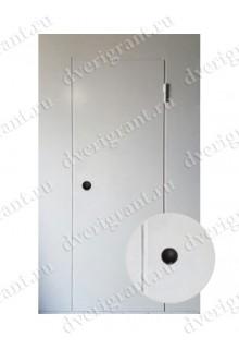 Металлическая дверь для подъезда 24-60