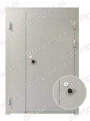 Техническая дверь - 24-75