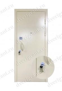 Нестандартная входная дверь на заказ 10-84
