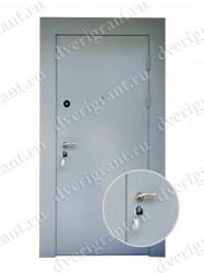 Металлическая дверь для дачи - 18-014