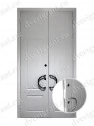 Двустворчатая металлическая дверь 22-007
