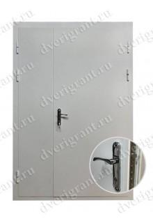 Металлическая дверь - модель - 22-024