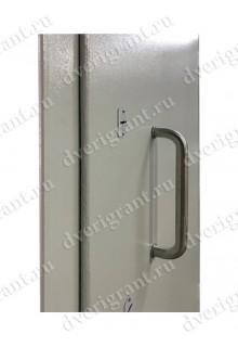 Металлическая дверь - модель - 22-025