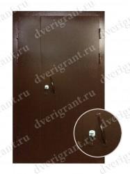 Тамбурная дверь - 05-003