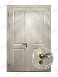 Тамбурная дверь - 05-004
