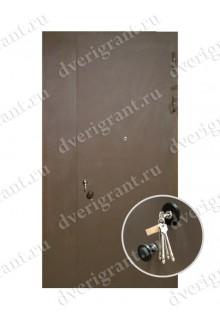 Металлическая дверь - модель - 05-005