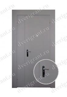 Металлическая дверь - модель - 10-013
