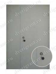 Тамбурная дверь - 10-017