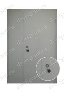 Металлическая дверь - модель - 10-017