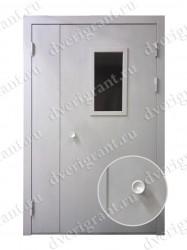 Тамбурная дверь - 13-010