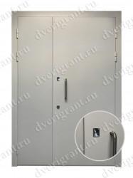 Тамбурная дверь - 13-015