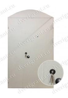 Металлическая дверь - 10-53