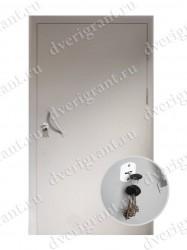Тамбурная дверь - 10-001