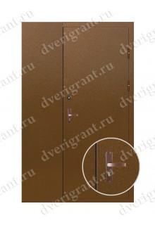 Металлическая дверь - модель 10-002